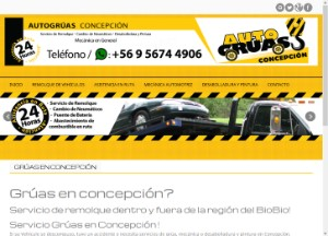 autogruasconcepcion_cl