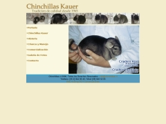 chinchillas_cl