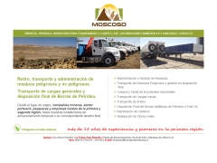 transportesmoscoso_cl