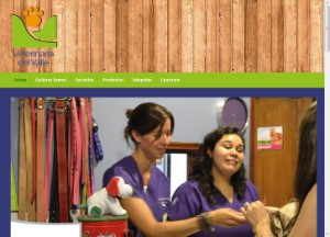 veterinariadelvalle_cl